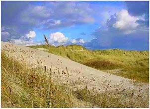 Photo: Ameland - De duinen op Ameland