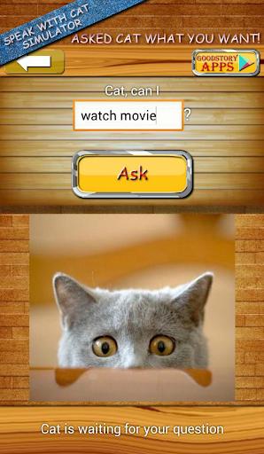 確認して下さい。猫。話します。シミュレータ