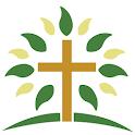 Clifton All Saints Academy icon