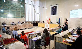 Concejales y alcalde, al Pleno con mascarillas