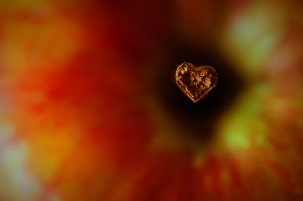 """""""Il tempo delle mele"""" :-D  di mariateresatoledo"""