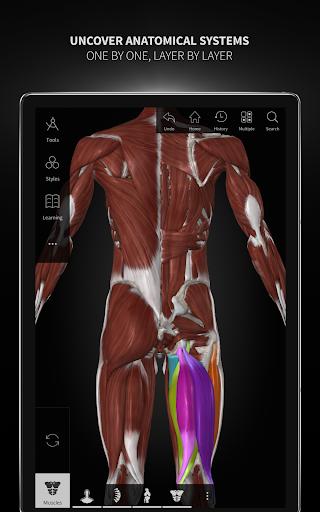 Anatomyka - 3D Human Anatomy Atlas 1.8.5 screenshots 14