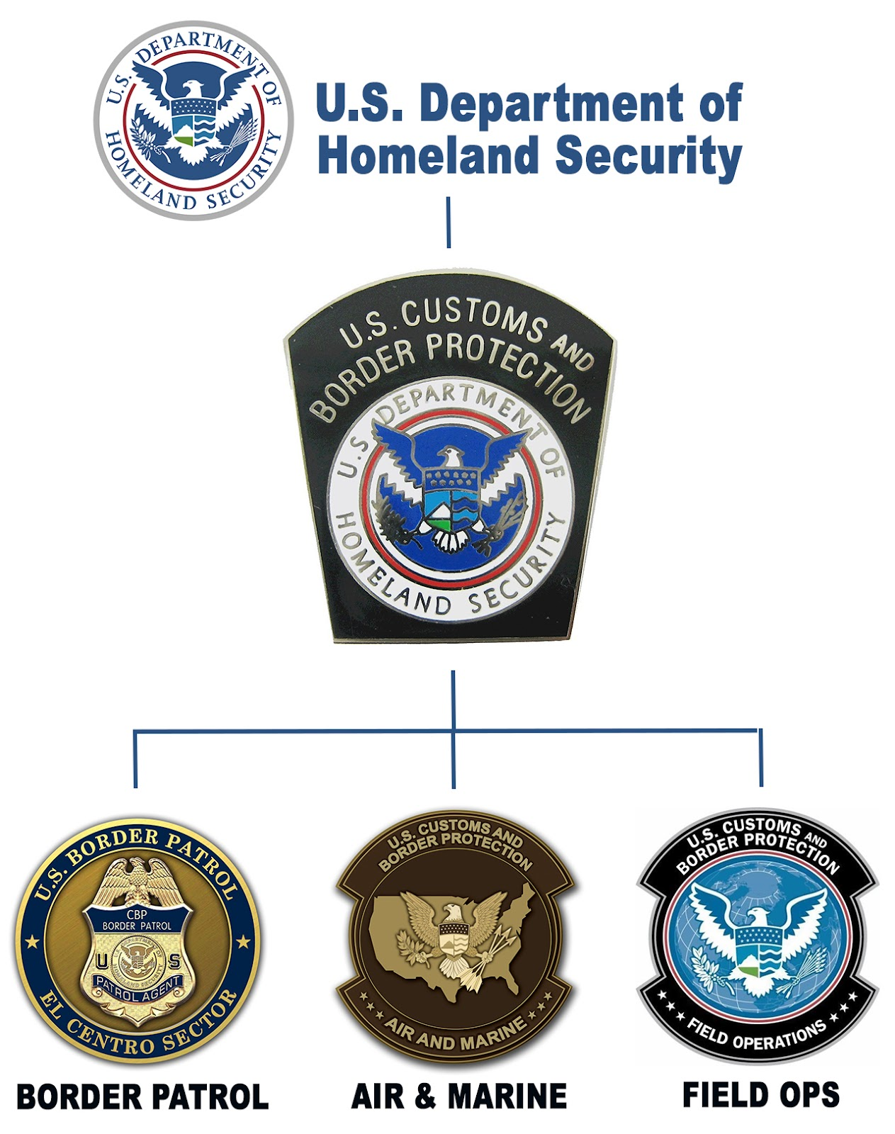 customs_055_homelandsecurity_orgchartjpg - Cbp Marine Interdiction Agent Sample Resume