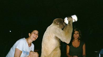 Photo: Monkey do.