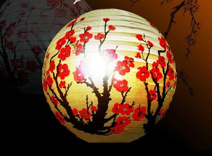 DIY Paper Lantern Ideas screenshot