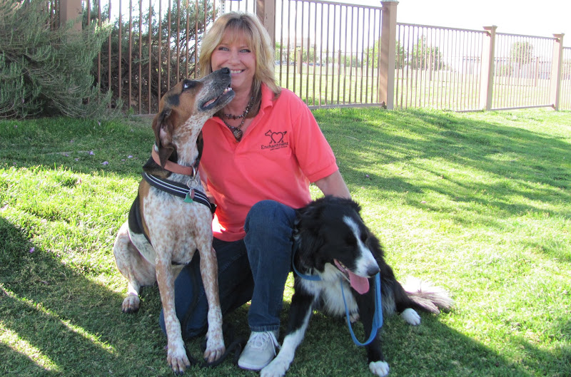 Photo: To celebrate Take Your Dog to Work Week, we present Kim, our Concierge, with Sienna and Scrappy. Scrappy wants to run to camp, but Sienna has kisses for mom!