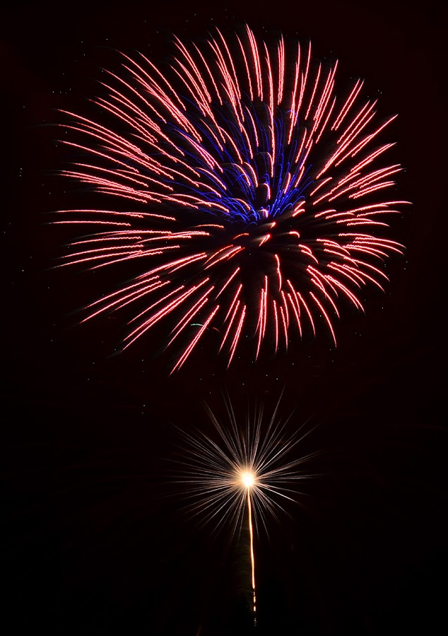 4th Fireworks by Linda Othersen - Public Holidays July 4th ( fireworks )