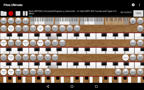 Pitea Ultimate - Church Organ screenshot 9