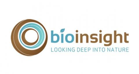 Bioinsight Logo