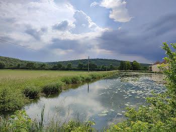 propriété à Chatillon-sur-seine (21)