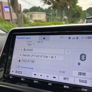シエンタ NSP170Gのカスタム事例画像 ☆Sakaji☆さんの2021年06月23日07:15の投稿