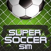 Super Soccer Sim