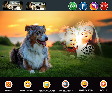 Dogs Photo Framespet Lovers Apps On Google Play