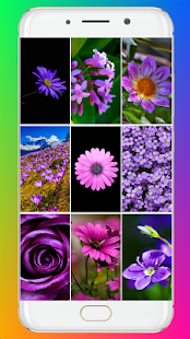 Download Purple Flower Wallpaper For PC Windows and Mac apk screenshot 1