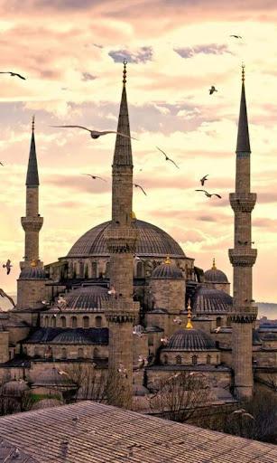 土耳其壁纸和主题