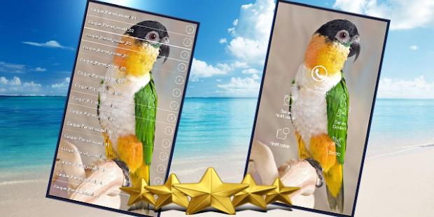 Caique Parrot Sounds : Caique Parrot Singing - náhled