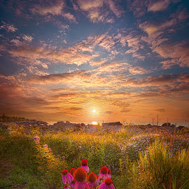Is Everything We Can by Phil Koch - Landscapes Sunsets & Sunrises ( trending, country, shadow, rural, office, scenic, hope, canon, beautiful, pastel, weather, season, sky, flowers, emotions, journey, natural, inspired, heaven, morning, field, light, peace, shadows, dawn, photography, love, sunrise, mood, vertical, endless, clouds, fineart, sun, life, colors, summer, unity, joy, lines, popular, arts, meadow, wisconsin, lake michigan, art, living, green, nature, inspirational, dramatic, portrait, lakefront, horizons, horizon, environment, sunlight, outdoors, blue, sunset, earth, purple, travel, serene, landscape,  )
