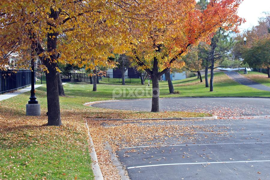 Autumn in Murray Park by Tony Huffaker - City,  Street & Park  City Parks ( park, autumn, car park, colors, trees )