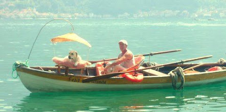 Photo: Doggy paddle Lake Como style!!