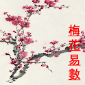 Plum Blossom Divination icon