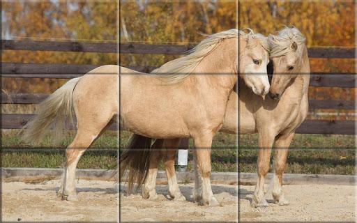 Puzzle - Beautiful Horses 1.24 screenshots 4