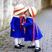Сонник близнецы