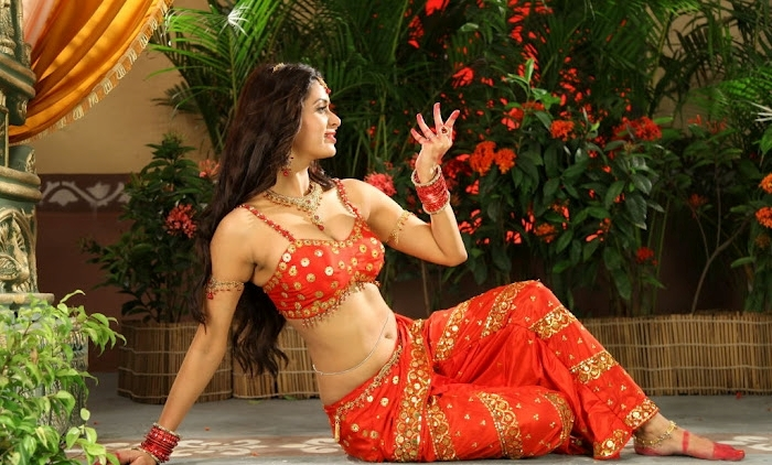 Meenakshi Dixit South Movie Scene, Actress Meenakshi Dixit hot Pics