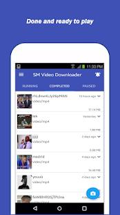 SM Video Downloader - náhled