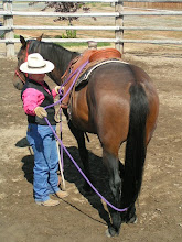 Photo: I am letting the rope rest on the lower leg, fetlock, hauch area, and eventually under the tail...with movement.