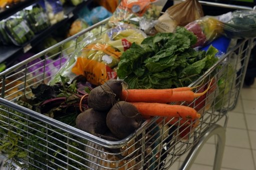 Food shopping. Picture: SUPPLIED