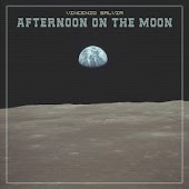 Afternoon on the Moon