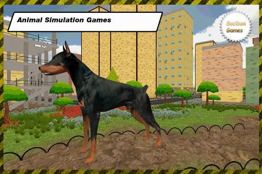 市の犬の生存|玩動作App免費|玩APPs
