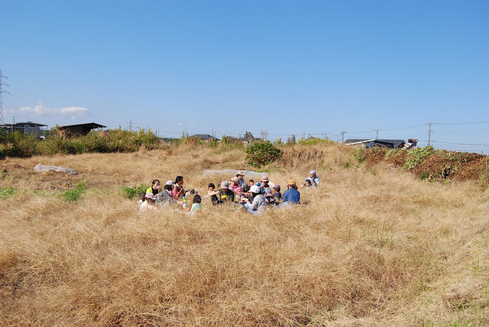 昼ご飯は、さつまいもの下の畑の草むらで食べました。