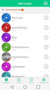 Ptačí zvuky - náhled