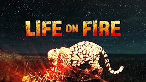 Life on Fire thumbnail