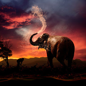 Cooling down by Caras Ionut - Digital Art Things