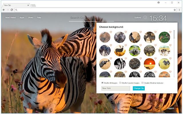 Zebra Wallpapers Zebras New Tab freeaddon.com