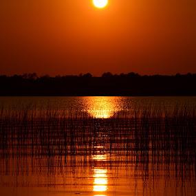 Beautiful Sunset, Minnesota Lake Country by Kathleen Koehlmoos - Landscapes Sunsets & Sunrises ( wolf lake, minnesota, sunset on the lake, minnesota lake country, lake sunset, lakes,  )