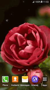 3D Rose Live Wallpaper- screenshot thumbnail