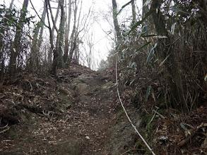 滑りやすい急登を進む