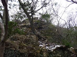 岩尾根を登る
