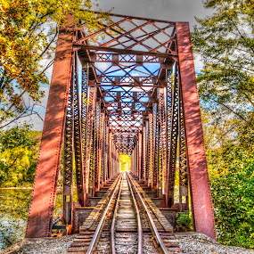 The bridge by Michael Wolfe - Buildings & Architecture Bridges & Suspended Structures ( leading lines, railroad tracks, trees, bridge, railroad bridge,  )