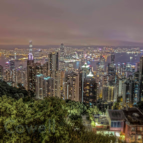 hong kong island from victoria peak by Paul Cowell - Buildings & Architecture Other Exteriors