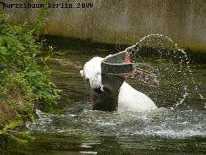 Photo: Wildes Herumschleudern ;-)