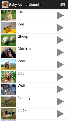 Animal Sounds screenshot 2