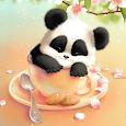 Sleepy Panda Wallpaper
