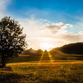 Durmitor  by Zoran Savic - Landscapes Mountains & Hills ( field, sky, sunrise, landscape, durmitor )