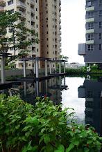 Photo: My swimming pool