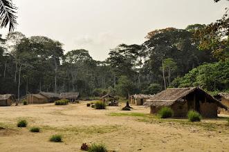 Photo: forest village