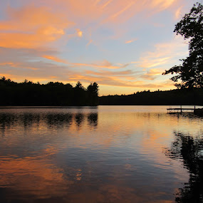 Sunset and Reflection on Bunganut Lake by Lynne Miller - Landscapes Sunsets & Sunrises ( water, lynne miller, bunganut lake, sunset, trees.l, lyman maine )